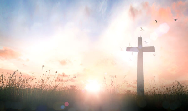 A large wooden cross in a glowing field of grass.
